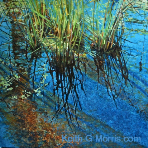 I was fascinated by the reflections of the afternoon sky and grasses on the water as well as the wonderful sienna brown tones of the surface under the water.